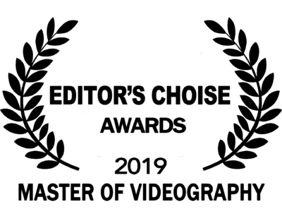 master of videography award logo